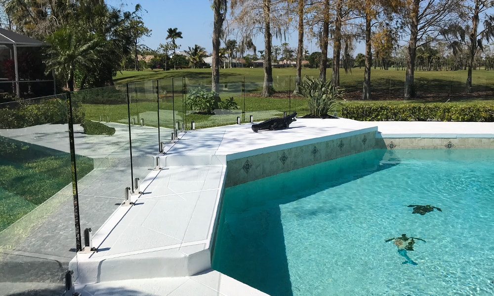 glass pool fencing 2-min